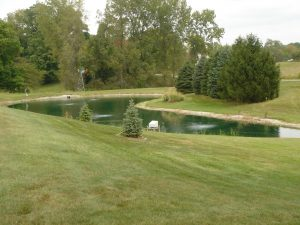 Bottom diffused aeration is a valuable asset to water quality.