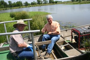 Beyond the boat, native aquatic plants hold soils in place.