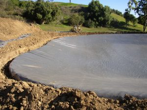 Pond Liners 1