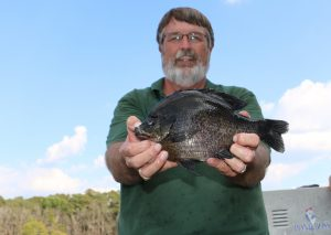 Grow Trophy Bluegill