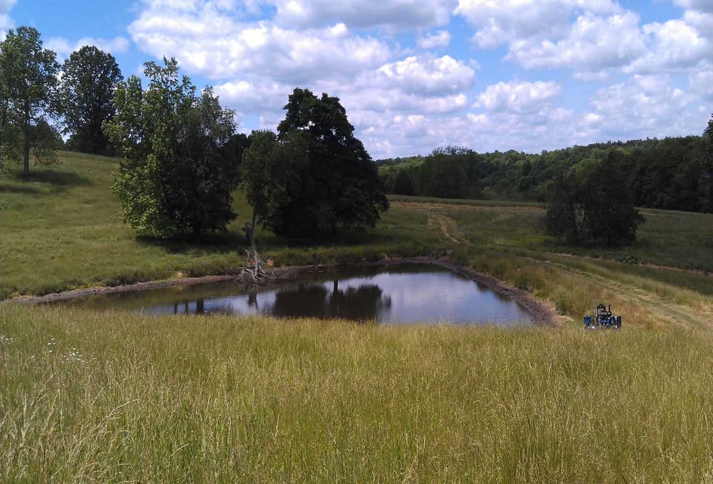 Renovating a Tennessee Pond :: Bob Lusk Outdoors
